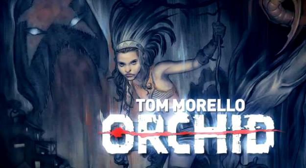 morello_orchid